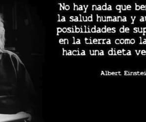 Albert Einstein, vegetarianism, and vegano image