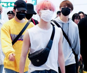 dino, carat, and lee chan image