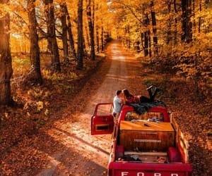autumn, couple, and fall image