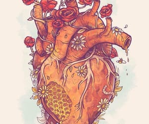 heart, biology, and flowers image