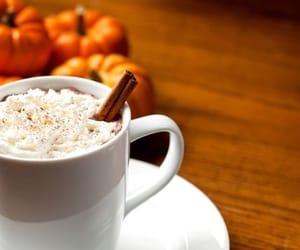 autumn, pumpkin, and Cinnamon image