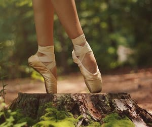 ballet, dance, and nature image