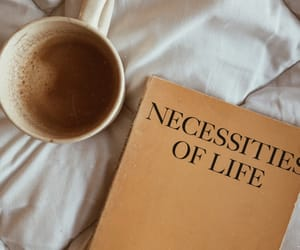 coffee, book, and cool image