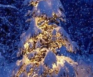 blue, lights, and christmas image