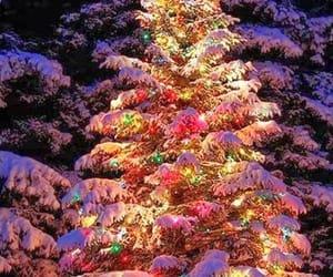 christmas, tree, and woods image