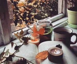 autumn, libros, and literatura image