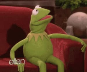 funny, kermit, and mood image