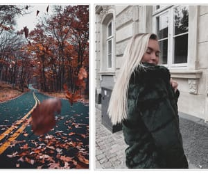 autumn, fashion, and orange image