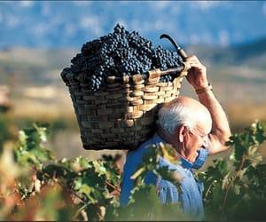 grandpa, Greece, and love greece image
