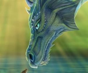 dragon and water image