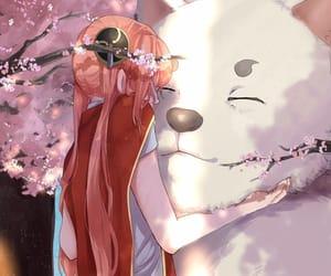 anime, anime girl, and gintama image