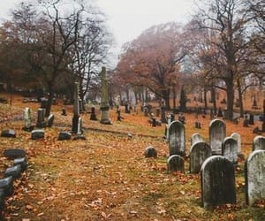autumn and cemetery image