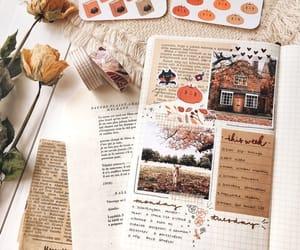 autumn, fall, and fall inspiration image