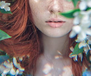 aesthetics, beautiful, and flower image