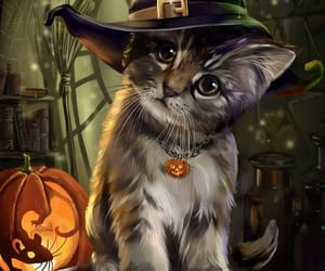 cat, pumpkin, and witch image