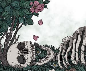 skeleton, bones, and flower image
