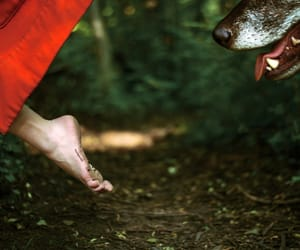 wolf, little red riding hood, and fairy tale image
