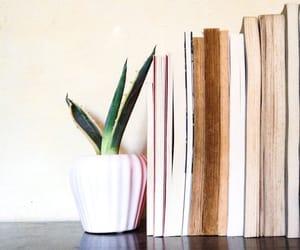 books, home decor, and minimal image