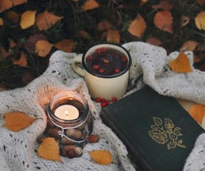 autumn, fall, and tea image