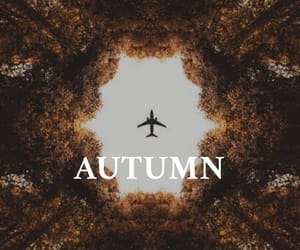 autumn, plane, and sheets image