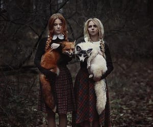 fox, girl, and forest image