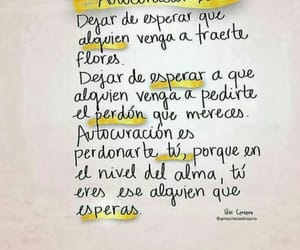 frase, message, and phrases image