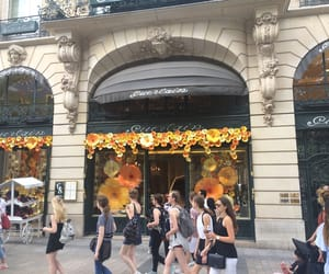 alternative, Champs-Elysees, and flowers image