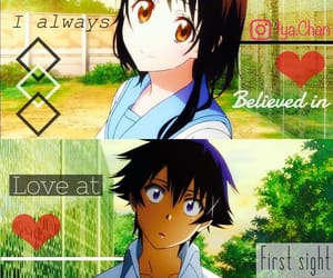 anime, couple, and nisekoi image