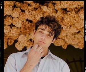 noah centineo, boy, and sierra burgess is a loser image