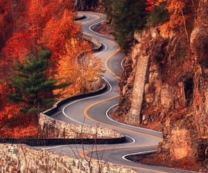fall, autumn, and road image