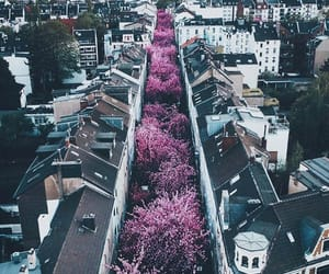 pink, city, and germany image