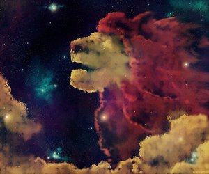 lion, lion king, and sky image