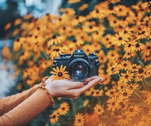 camera, photography, and yellow image