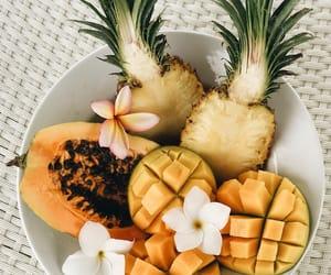 flower, fruit, and lotus image