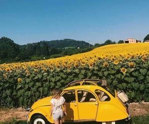 yellow, sunflower, and girl image