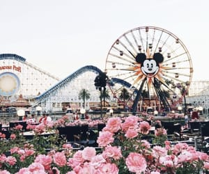 disney, disneyland, and flowers image