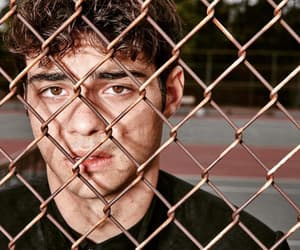 boy, noah centineo, and noah image