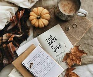 autumn, book, and pumpkin image