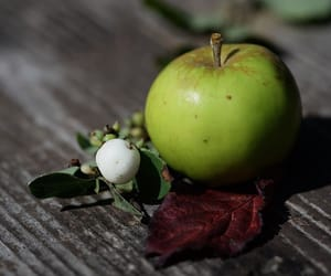 aesthetic, apple, and beautiful image