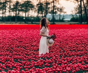 flowers, red, and girl image