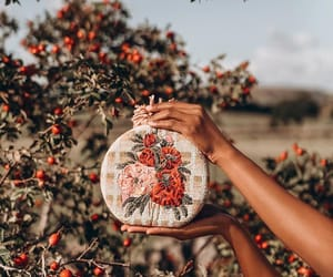 apple, autumn, and bag image