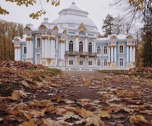 autumn, foliage, and nature image
