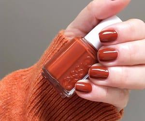 Pumpkin spice _ Love this colour ❤️