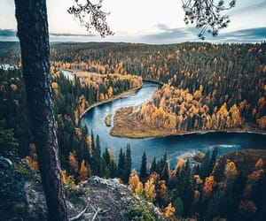 finland, river, and forest image