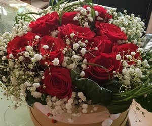 birthday, flower, and gift image