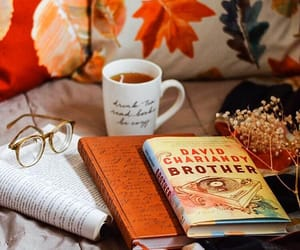 blanket, cozy, and fall image