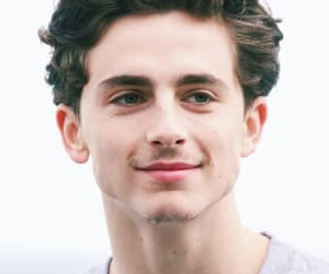 gorgeous, sexy man, and timothee chalamet image