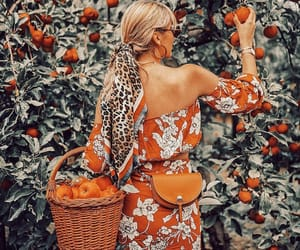 apples, boho, and bushes image