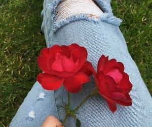 girl, jeans, and red rose image