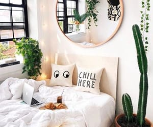 bedroom, home, and cactus image